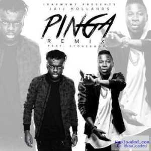 Jaij Hollands - Pinga (Remix) Ft. StoneBwoy
